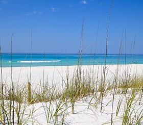 destin beach florida newsletter
